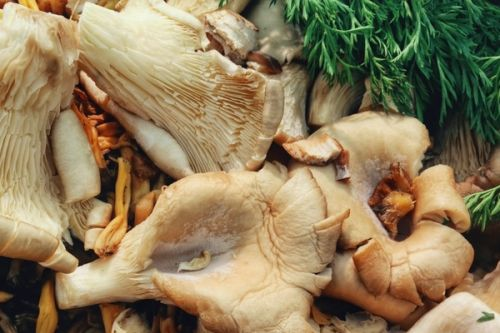 5 Ingredients You Should Be Adding to Your Bone Broth