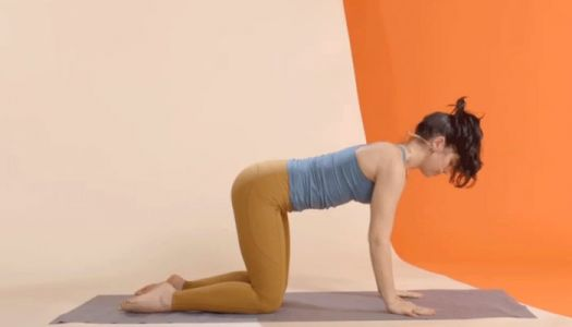 Light Up Your Core, Arms, And Legs In Minutes With This Quintessential Move