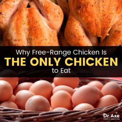 Free-Range Chicken Benefits vs. Conventional Chicken Dangers