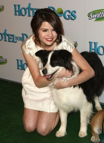These 9 Celebrities Have Rescued Pets & They're Seriously Inspiring