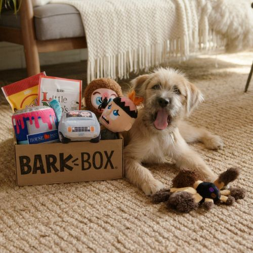 This 'Home Alone' BarkBox Has Toys & Treats Themed From The Movie For Your Dog
