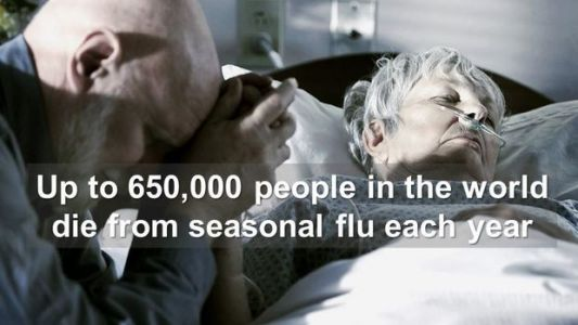 Seasonal Influenza Deaths More Common Worldwide Than Previously Thought