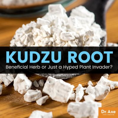 Kudzu Root: Beneficial Herb or Just a Hyped Plant Invader?