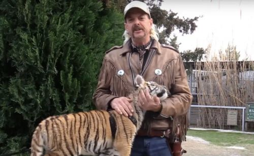 What Happened To Joe Exotic's Animals After 'Tiger King? Here's What We Know