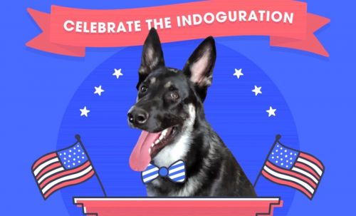 This Video Of Joe Biden's Dog Major's Indoguration Is All About The Presidential Pup