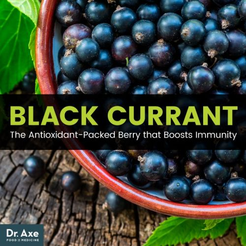 Black Currant: The Antioxidant-Packed Berry that Boosts Immunity