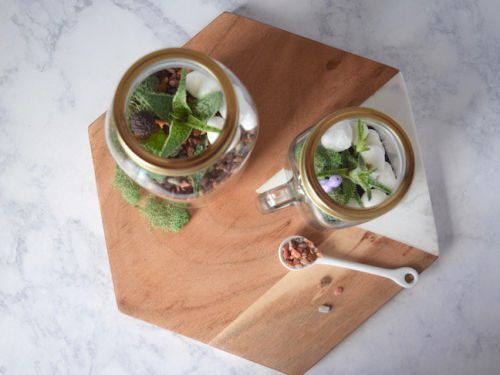 Need A Little Green Indoors? This DIY Mason Jar Terrarium Is So Easy To Make