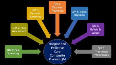 One Step Ahead: A Composite Measure to Capture Critical Hospice and Palliative Care Processes