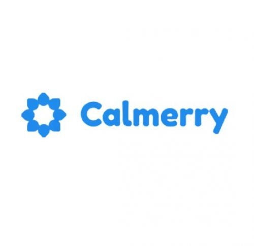 BetterHelp vs Calmerry: The Most Commonly Used Online Therapy Platforms