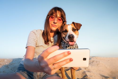 Dog Point Of View Captions For Instagram Pics & TikTok Videos