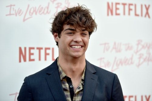 This Video Of Noah Centineo Straightening His Hair & Reading Shakespeare Is Everything