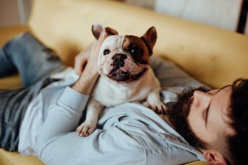 Father's Day Captions For Dog Dads You Love Furry Much