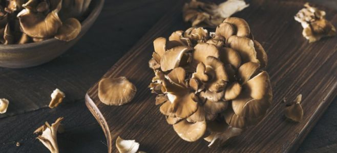 Maitake Mushroom Benefits Blood Sugar, Cholesterol, Immunity & More