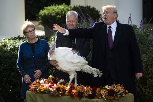 Donald Trump's Thanksgiving 2020 Tweet Celebrated A Controversial Supreme Court Ruling