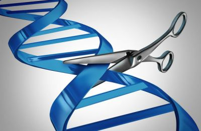 Can CRISPR deliver real progress in Duchenne muscular dystrophy?