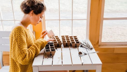 The Easiest Foods To Grow At Home - That You Can Still Start This Season